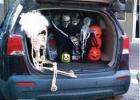 Frightfully delightful trunk or treat night
