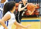 Area Basketball News
